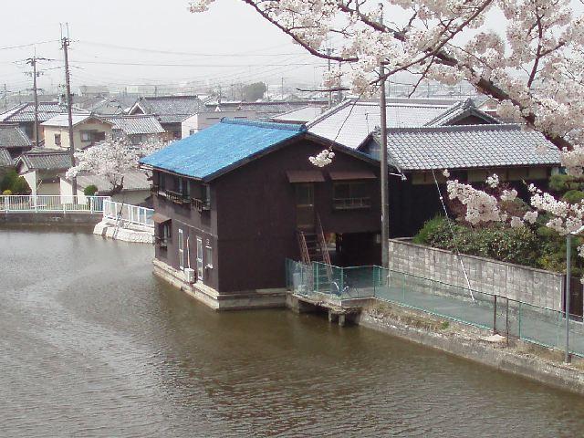 20060411-1.jpg