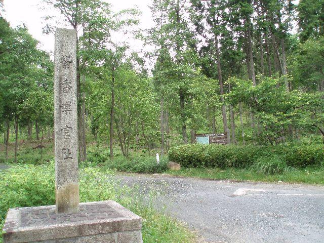 20060611-1.jpg