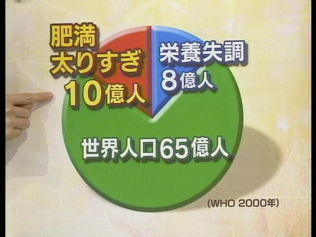 20060905-1.jpg