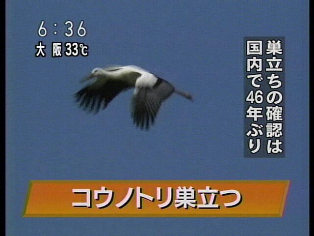 20070801-2.jpg