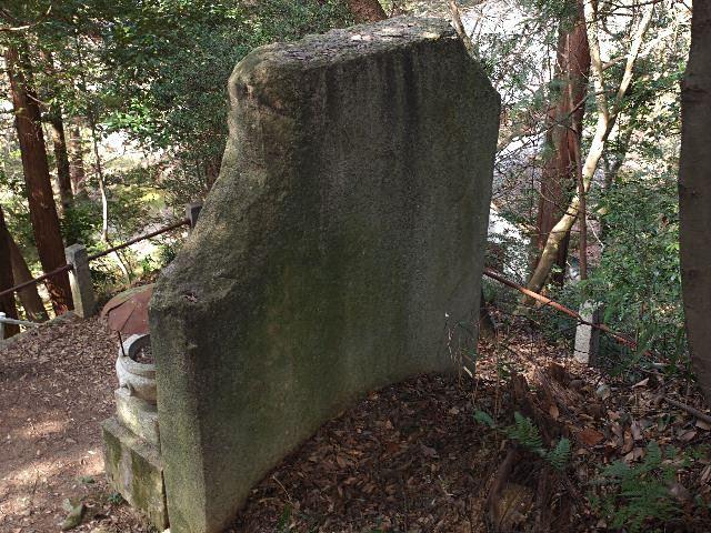 20110227-2.jpg