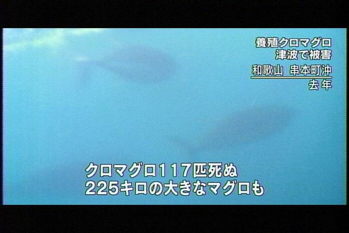 20110315-3.jpg