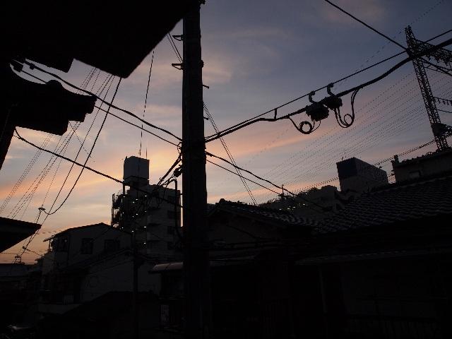 20110621-1.jpg